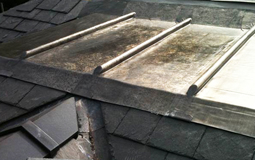 Lead Roof Company